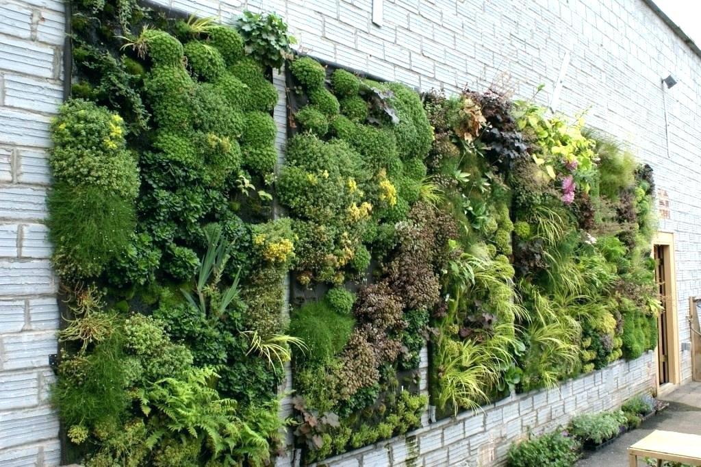 Taman dengan konsep living wall atau taman vertical